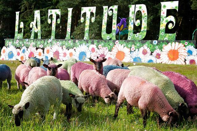 Innerplace Recommended Venue Latitude Festival